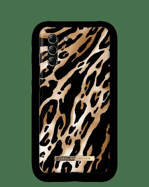 Iconic Leopard